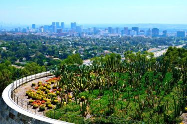 View of Los Angeles from the Getty Center by jziani
