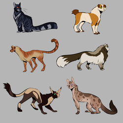 Cats by smol-kitty