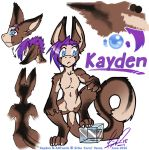 Kayden Quick Ref by carnival