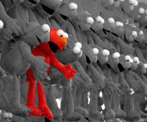 Can you find Elmo? by mohaganbev