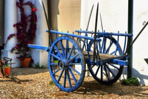 Blue cart by vmribeiro