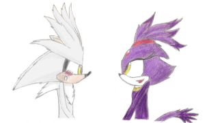 Blaze and Silver by sonic8chilidog