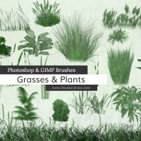 Grasses and Plants Photoshop and GIMP Brushes by redheadstock