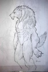 werewolf drawing 9 by tribalwolfie