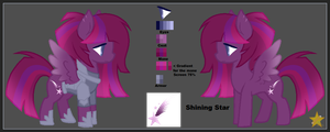 [Ref Sheet] Shining Star by StarsOfTheBlueSpirit