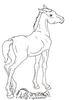 Foal Lineart 02 by life-d-sign