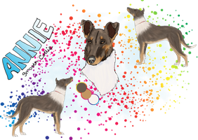 Annie Get Your Gun - SOLD by Lilac-Valley-Kennels