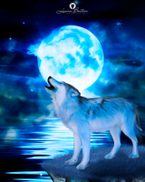 Have you ever heard the wolf cry to the blue corn by LuhaBiha