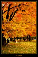 Fall Cemetery by escapism