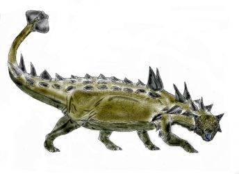 Euoplocephalus by Durbed