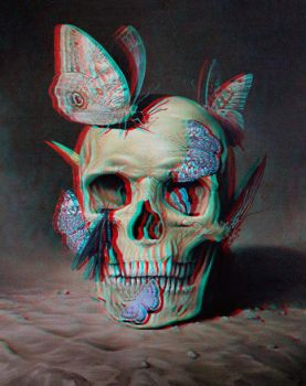 Skull and butterfly conversion 3d by Fan2Relief3D