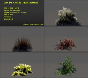 Free 3D plants textures 03 by Yughues