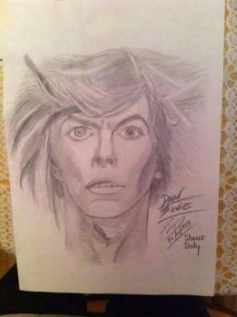 Bowie Tribute by Slim-Shaney-2000