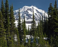 Mount Rainier by BWilliamWest