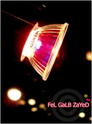W'9oo7 by FeL-GaLB-ZaYeD