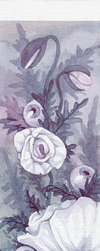 Bookmark - Poppies by zmeess