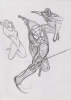 Spider's by nic011