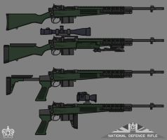 National Defence Rifle by linseed