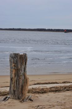 View On Plum Island 2 by Miss-Tbones