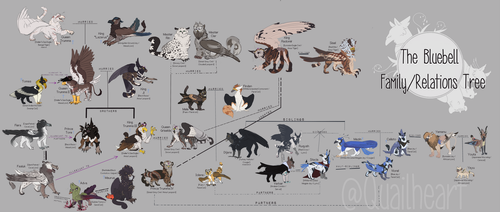 BLUEBELL Family/Relations Tree by Quailheart