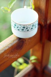 Cup of Wishes by Jedenastka