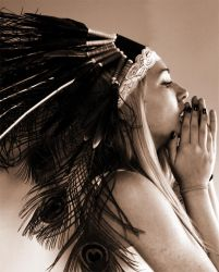 indian plume by Adaphoto