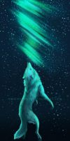Lost in the Night Sky by WildWolvess