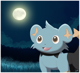 Shinx Background Practice by pichu90