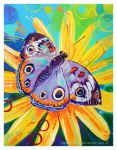 Buckeye Butterfly by TooMuchColor