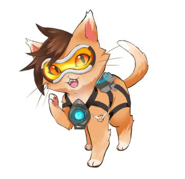 Tracer Cat by AkiDead