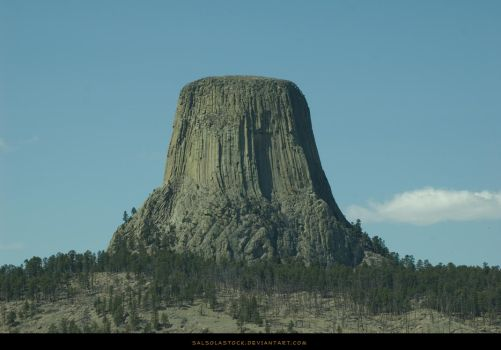 Devil's Tower 2 by SalsolaStock