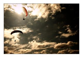gliders by raun
