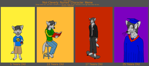 Character Meme by King-Roxas