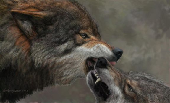 It's a Wolf Thing by Hareguizer