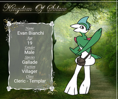 Kingdom of Solace Application: Evan by SunbreakerTyphlosion