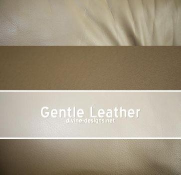 Gentle Leather by TehAngelsCry