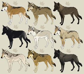 adoptables [ open ] by sighthounds