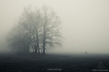 come and go by theVolucris