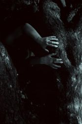 Buried under the roots of an old tree by NatalieVing