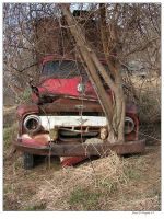 Old Purina Truck II by colts4us