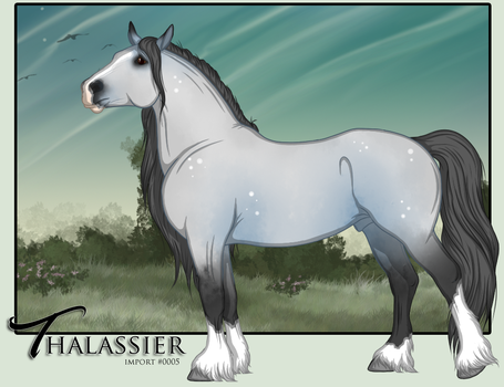 Thalassier - Import 0005 by Everidiann