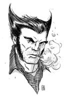Wolverine by JasonCopland