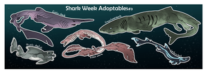 Shark Week Adoptables #3 OPEN by Mikaley