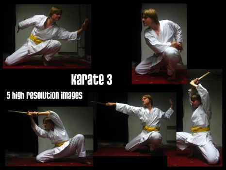 Karate 3 by Mithgariel-stock