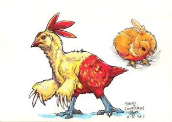 Daily drawings : Torchic and Combusken by NadiavanderDonk