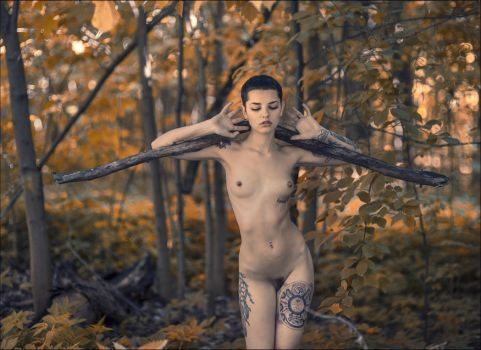 forest nymph by photoport