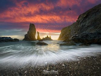 The Creation by Philippe-Albanel