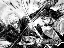 Ichigo vs Byakuya by RomaniacC