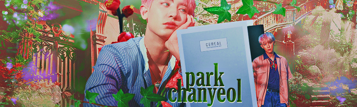 Park Chanyeol KoKoBop Cover by MeridaErva
