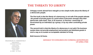 Franklin D Roosevelt - the threats to liberty by YamaLama1986